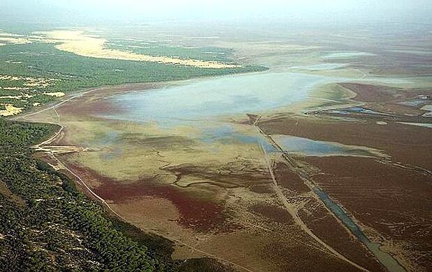 Doñana a vista de pájaro