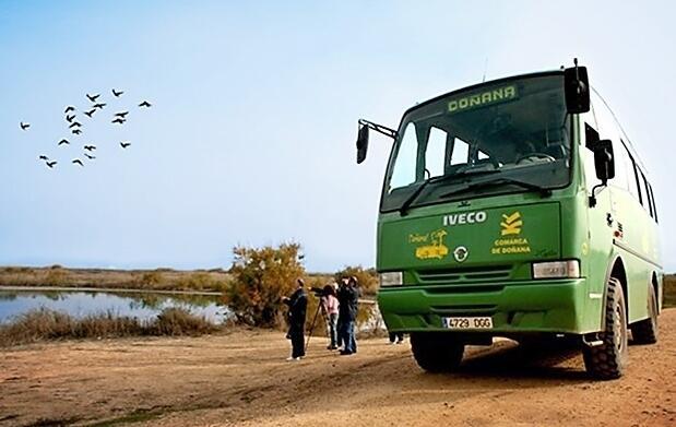 Visita guiada por Doñana en 4x4