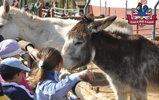 Inglés para niños en la granja escuela