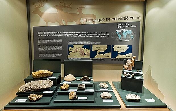 Geogymkana + entrada Casa de la Ciencia