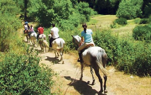 Paseo a caballo por la Sierra de Aracena
