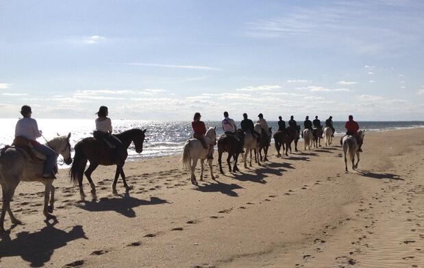 Ruta de 2 horas a caballo por Doñana