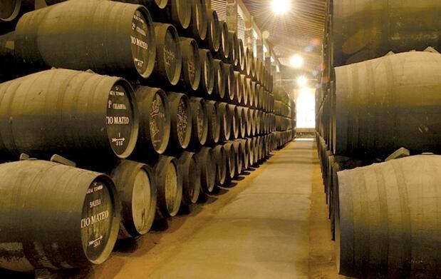 Visita a Bodega con cata de vinos